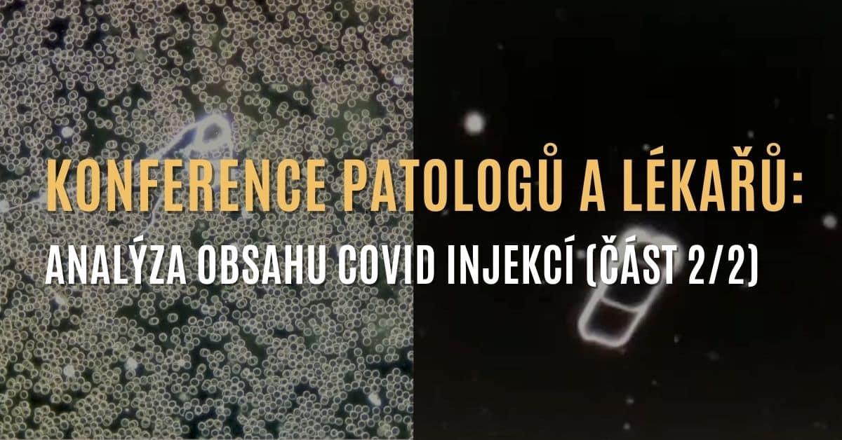 Konference patologů a lékařů: Analýza covid injekcí a jejich obsahu (část 2/2)